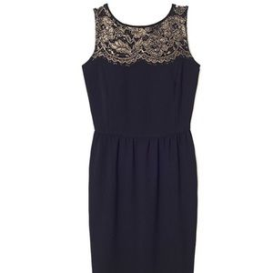 LOFT Black dress with gold lace detailed collar